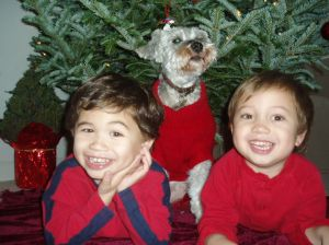 breast cancer mom kids boys mattie dog lymphedema mastectomy