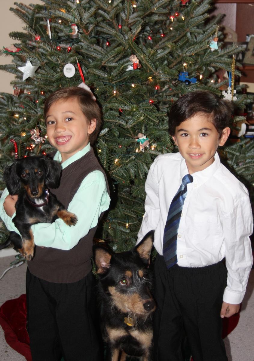 cancerinmythirties.wordpress.com breast cancer thirties young kids mother motherhood mom 30s Christmas