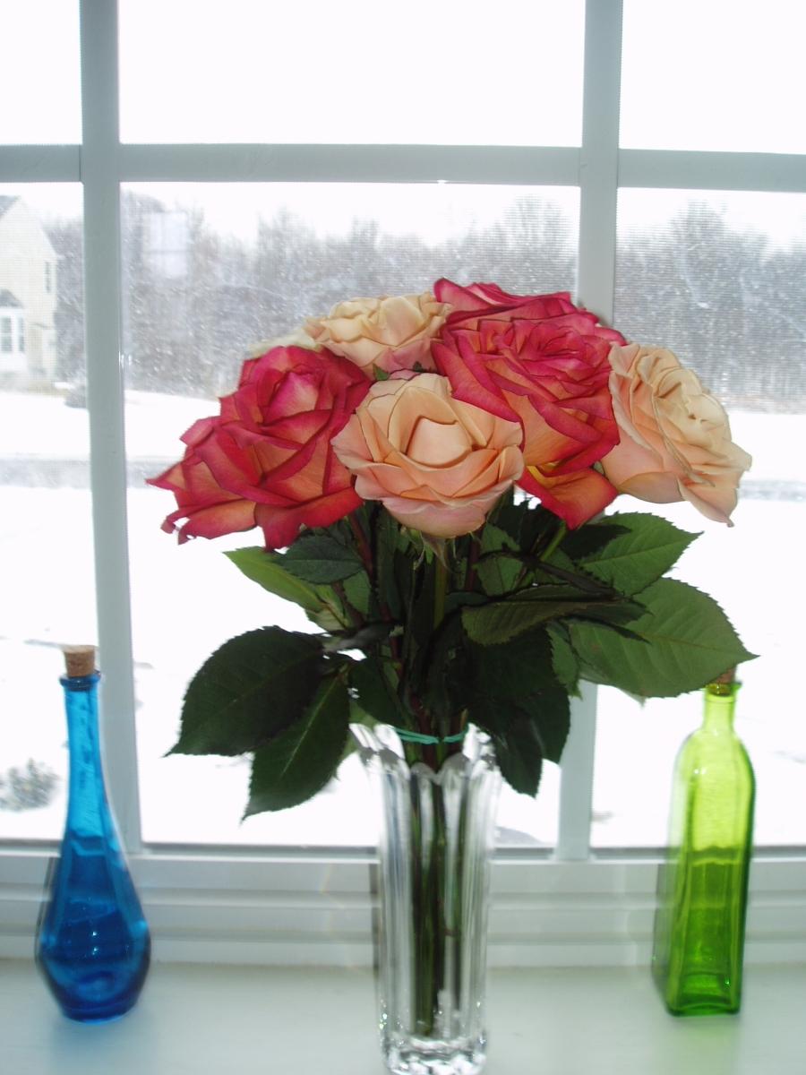 cancerinmythirties.wordpress.com breast cancer winter photo challenge changing seasons illness